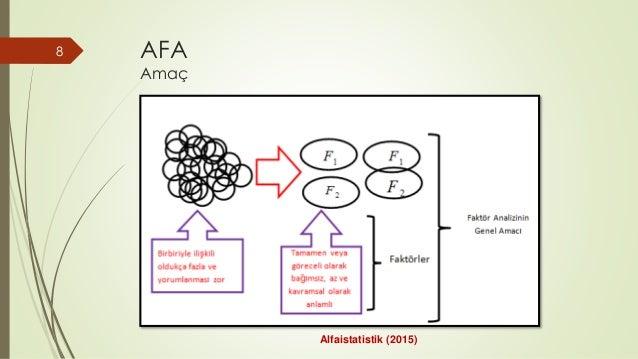 AFA Amaç 8 Alfaistatistik (2015)