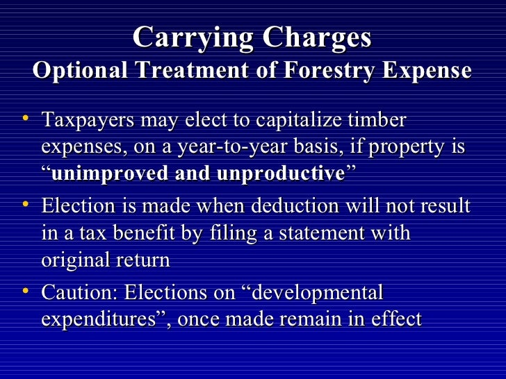 Capitalize Carrying Cost Rental Property