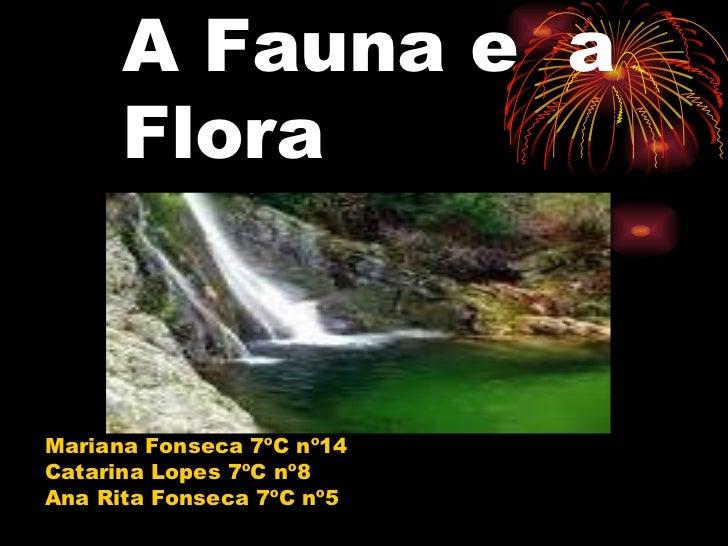 A Fauna e  a Flora Mariana Fonseca 7ºC nº14 Catarina Lopes 7ºC nº8 Ana Rita Fonseca 7ºC nº5