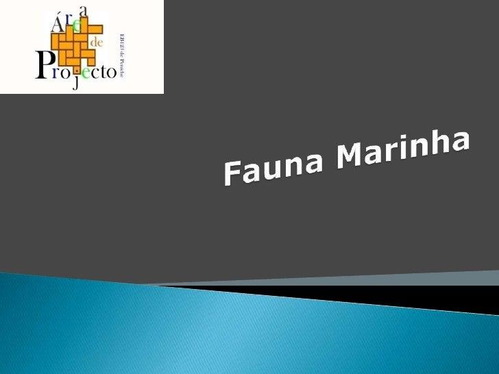 Fauna Marinha <br />