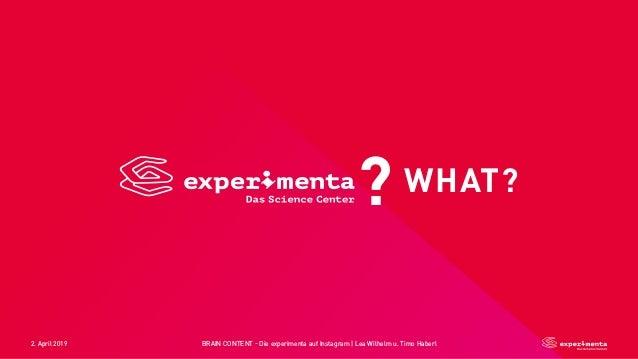 2. April 2019 BRAIN CONTENT - Die experimenta auf Instagram   Lea Wilhelm u. Timo Haberl WHAT??