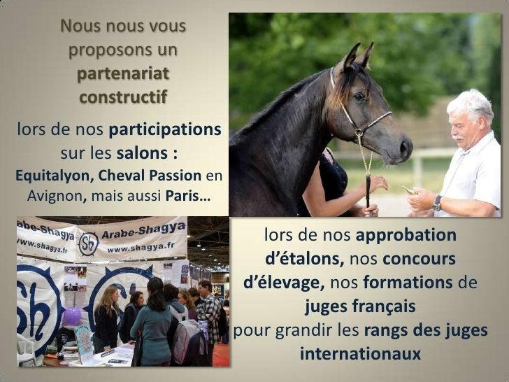 Nous nous vous proposons un partenariat constructif<br />lors de nos participations <br />sur les salons : Equitalyon, Che...