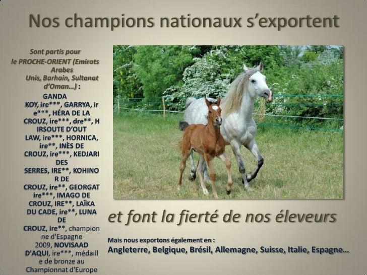 Nos champions nationaux s'exportent<br />Sont partis pour<br />le PROCHE-ORIENT (Emirats  Arabes Unis, Barhain, Sultanat d...