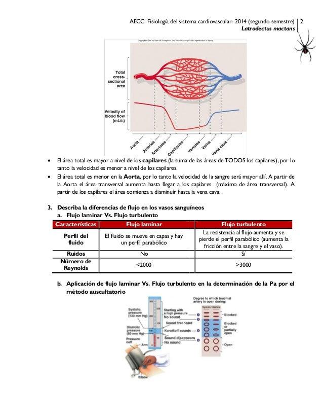 AFCC fisiología del sistema cardiovascular
