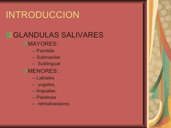 INTRODUCCION <ul><li>GLANDULAS SALIVARES </li></ul><ul><ul><ul><li>MAYORES:  </li></ul></ul></ul><ul><ul><ul><ul><li>Parot...
