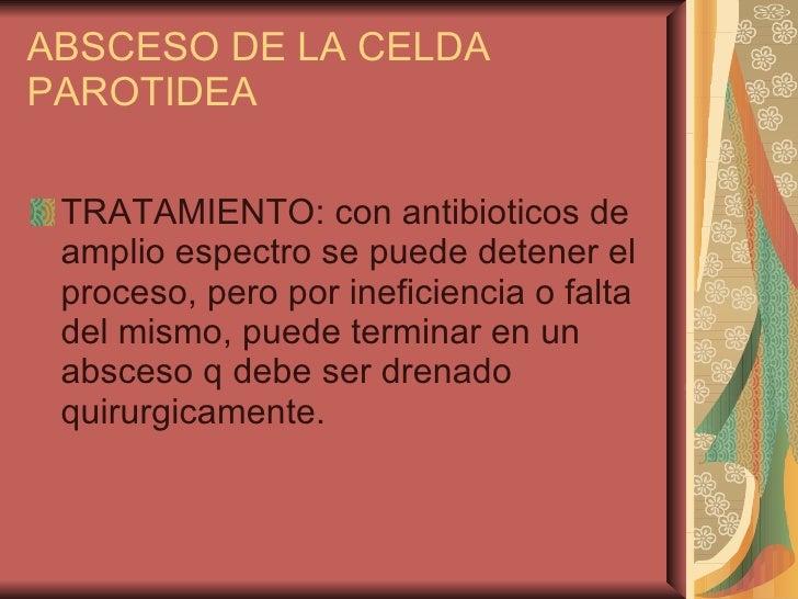 ABSCESO DE LA CELDA PAROTIDEA <ul><li>TRATAMIENTO: con antibioticos de amplio espectro se puede detener el proceso, pero p...