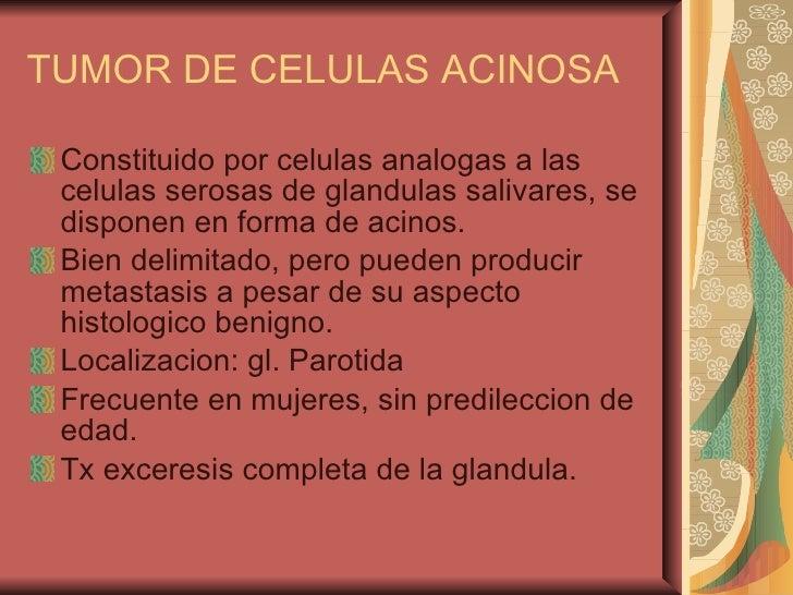 TUMOR DE CELULAS ACINOSA <ul><li>Constituido por celulas analogas a las celulas serosas de glandulas salivares, se dispone...