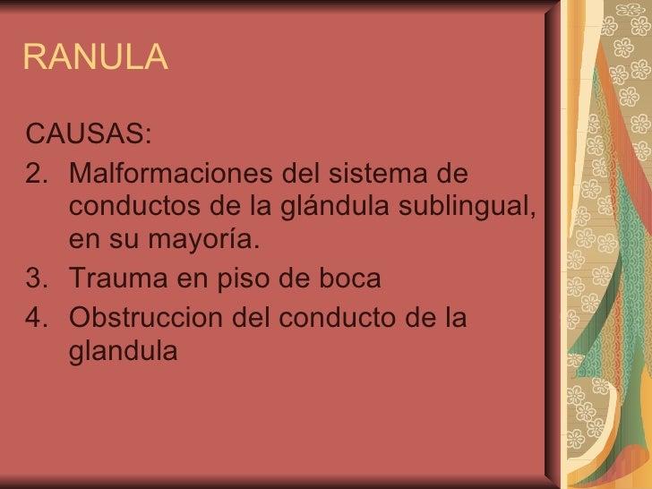 RANULA <ul><li>CAUSAS: </li></ul><ul><li>Malformaciones del sistema de conductos de la glándula sublingual, en su mayoría....