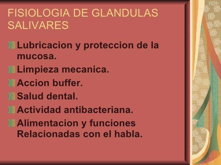 FISIOLOGIA DE GLANDULAS SALIVARES <ul><li>Lubricacion y proteccion de la mucosa. </li></ul><ul><li>Limpieza mecanica. </li...