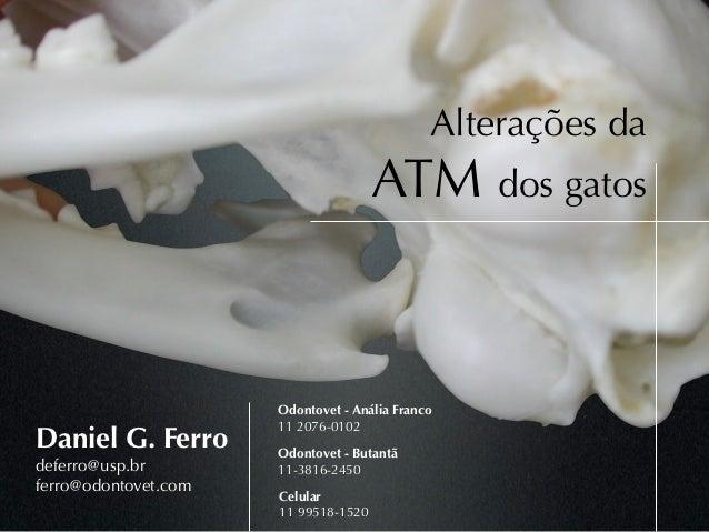 Alterações da                                      ATM dos gatos                      Odontovet - Anália Franco           ...