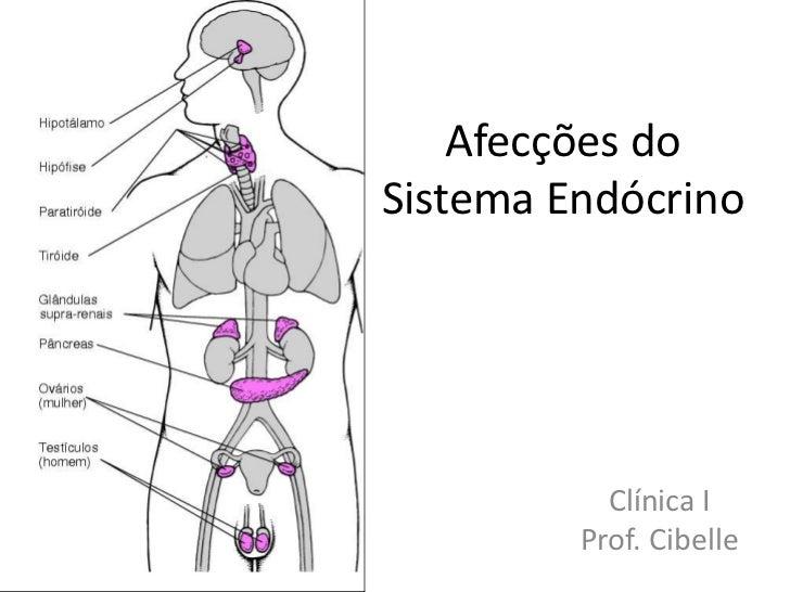 Afecções doSistema Endócrino           Clínica I         Prof. Cibelle