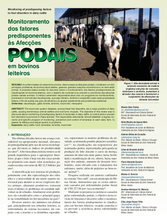 Monitoring of predisposing factors to foot disorders in dairy cattle  Monitoramento dos fatores predisponentes às Afecções...