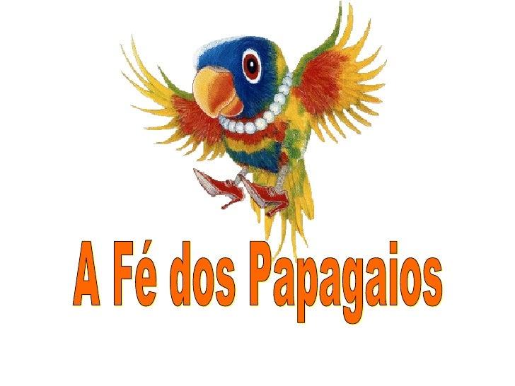 A Fé dos Papagaios