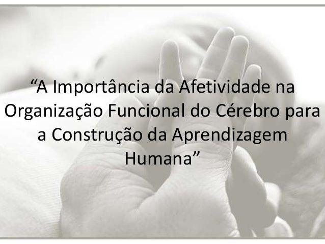 """""""A Importância da Afetividade na Organização Funcional do Cérebro para a Construção da Aprendizagem Humana"""""""