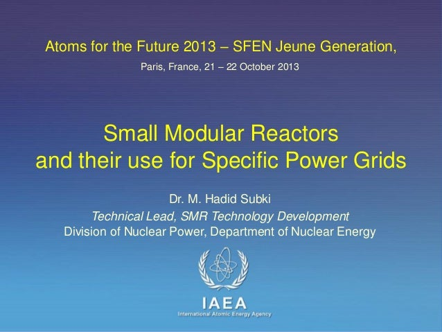 Atoms for the Future 2013 – SFEN Jeune Generation, Paris, France, 21 – 22 October 2013  Small Modular Reactors and their u...