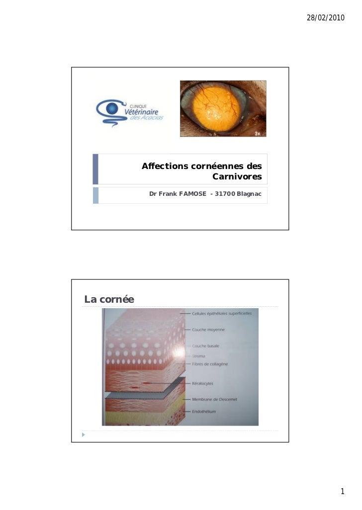 28/02/2010            Affections cornéennes des                           Carnivores             Dr Frank FAMOSE - 31700 B...