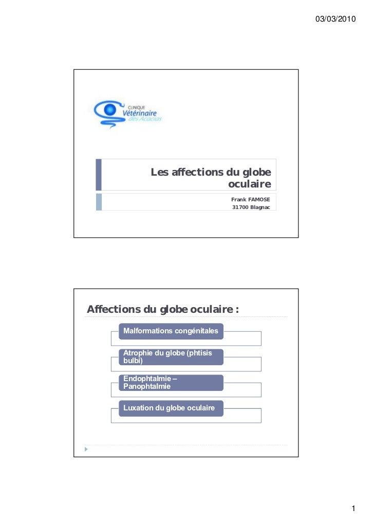 03/03/2010              Les affections du globe                             oculaire                                    Fr...