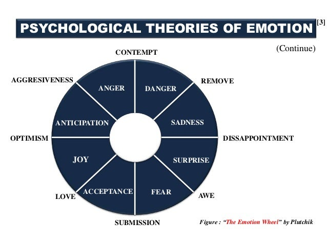 emotion emotion essay theory Many people were taken aback by the movie's messages about emotions and,  especially, the role that sadness plays in shaping the lives and.