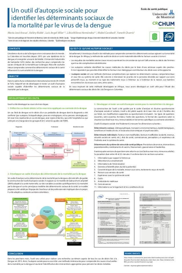 Un outil d'autopsie sociale pour identifier les déterminants sociaux de la mortalité par le virus de la dengue Maria José ...
