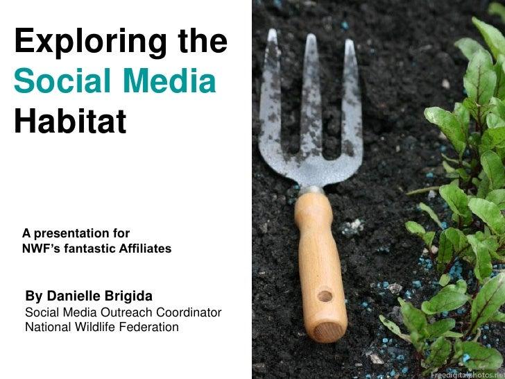 Exploring the Social Media Habitat   A presentation for NWF's fantastic Affiliates   By Danielle Brigida Social Media Outr...