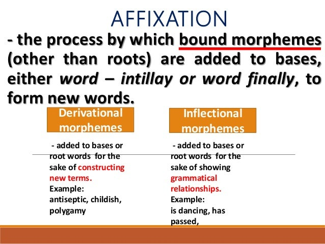 Affixation, compounding, multi - word verbs