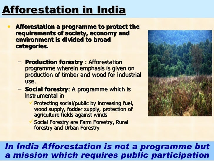 afforestation in india Create dense, native forests using one of the pioneering methods of forest  creation in the world, combined with the experience and expertise of afforestt.