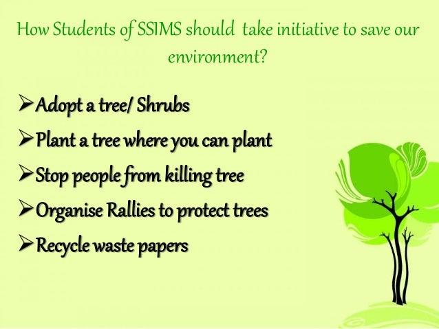 essay about deforestation