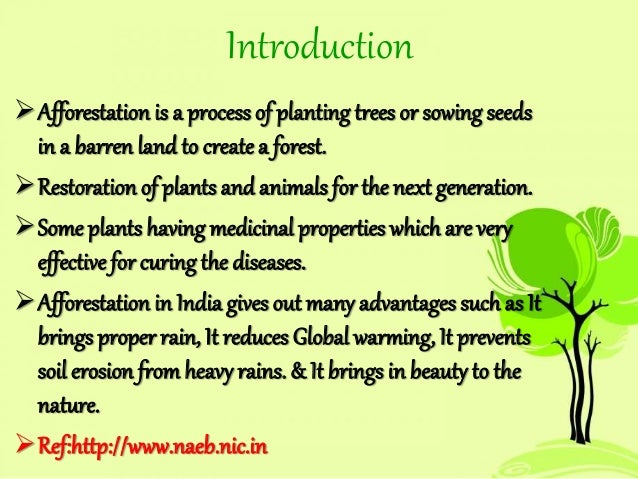 essay about afforestation Short paragraph on afforestation category: essays, paragraphs and articles on april 2, 2014 by sanjay tripathi afforestation means massive program of social forestry to meet demands to local people for fuel, fodder, timber etc afforestation restores ecological balance of all ecosystems, maintain biological diversity, and.
