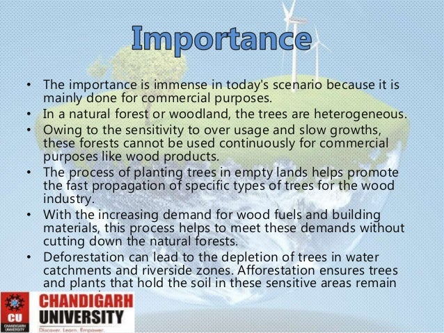 importance of afforestation Free essays on importance afforestation get help with your writing 1 through 30.
