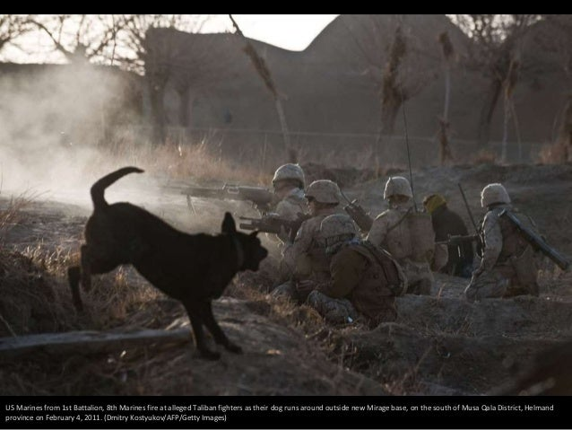Afghanistan: Dogs of War Slide 3