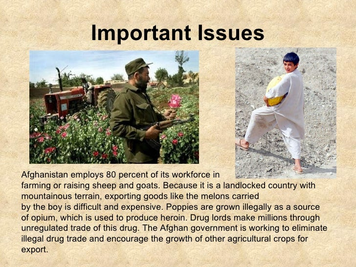 Important Issues Afghanistan employs 80 percent of its workforce in  farming or raising sheep and goats. Because it is a l...