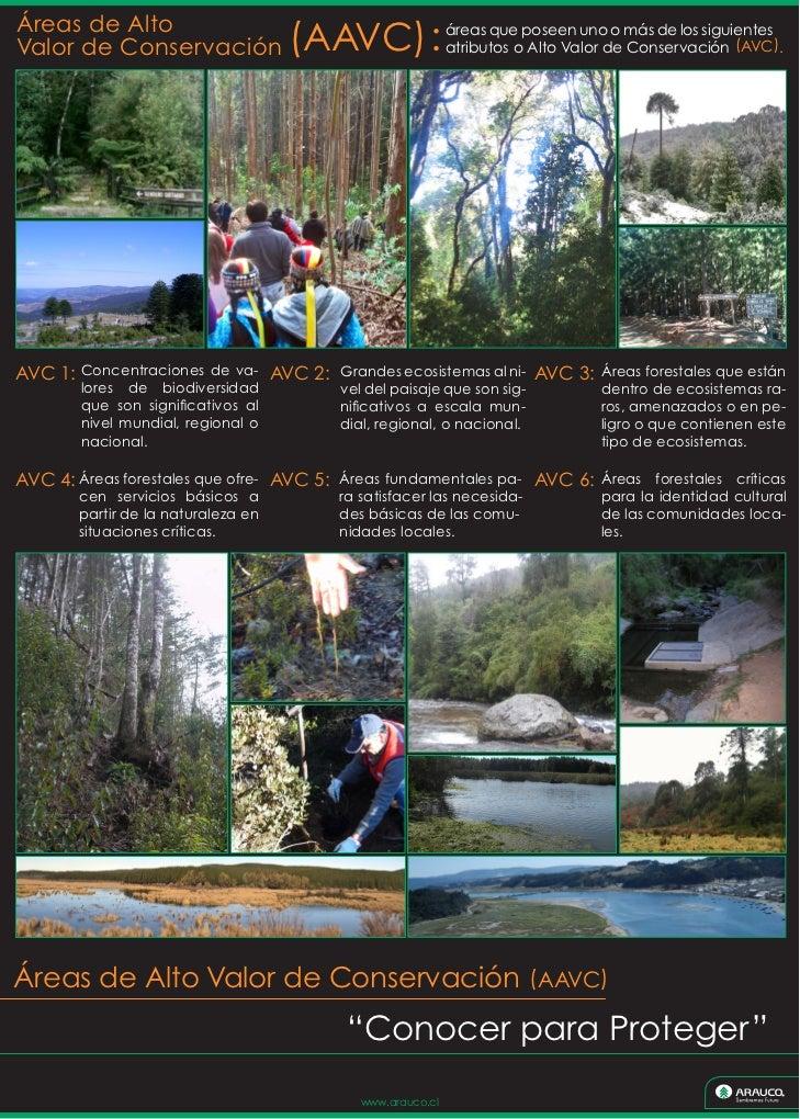 Áreas de AltoValor de Conservación                 (AAVC)                     áreas que poseen uno o más de los siguientes...