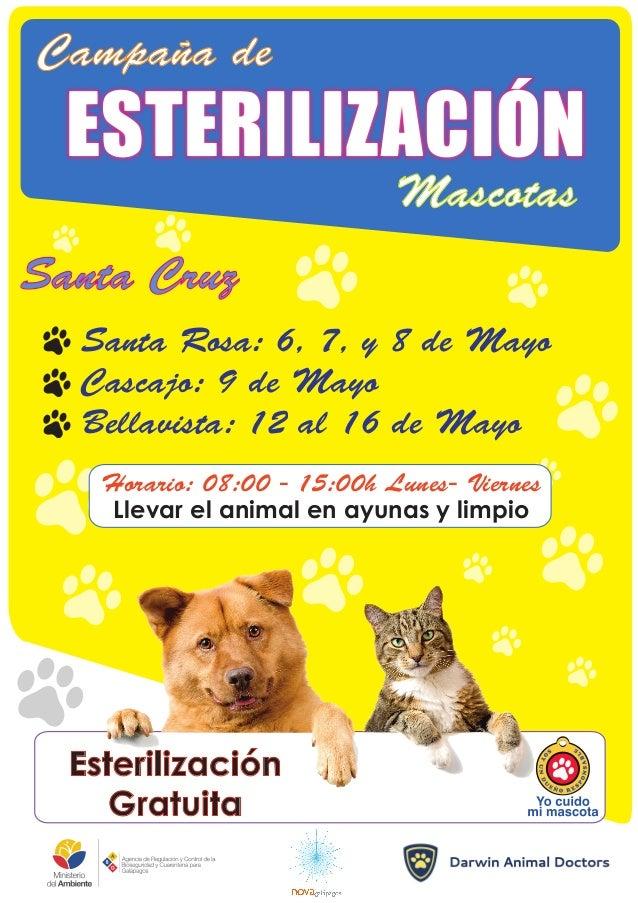 Campaña de Mascotas ESTERILIZACIÓN Santa Rosa: 6, 7, y 8 de Mayo Cascajo: 9 de Mayo Bellavista: 12 al 16 de Mayo Horario: ...