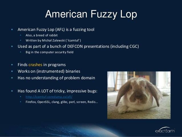 American Fuzzy Lop Slide 2