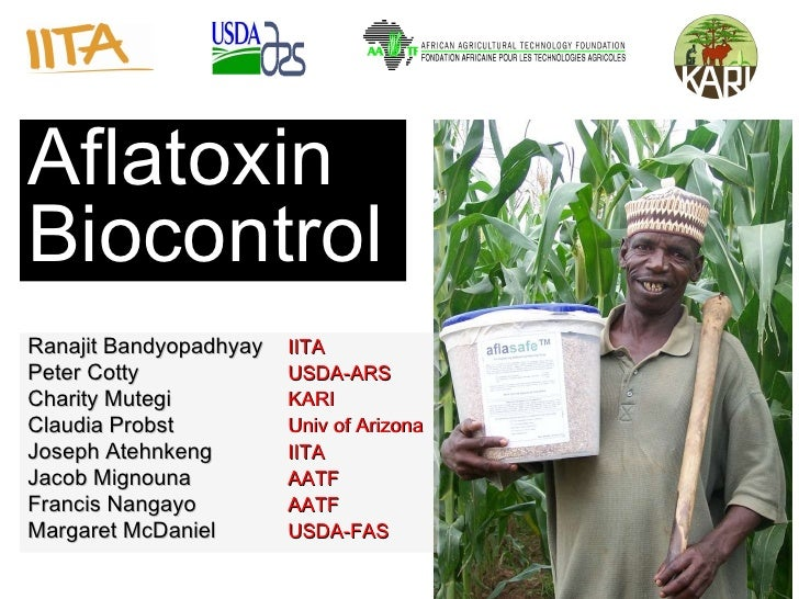 Source:  Environmental Health Perspectives   Aflatoxin Biocontrol Ranajit Bandyopadhyay IITA Peter Cotty USDA-ARS Charity ...