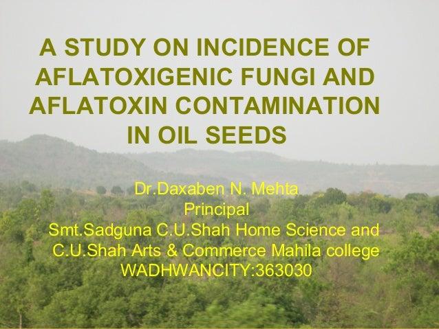 A STUDY ON INCIDENCE OFAFLATOXIGENIC FUNGI ANDAFLATOXIN CONTAMINATION       IN OIL SEEDS          Dr.Daxaben N. Mehta     ...