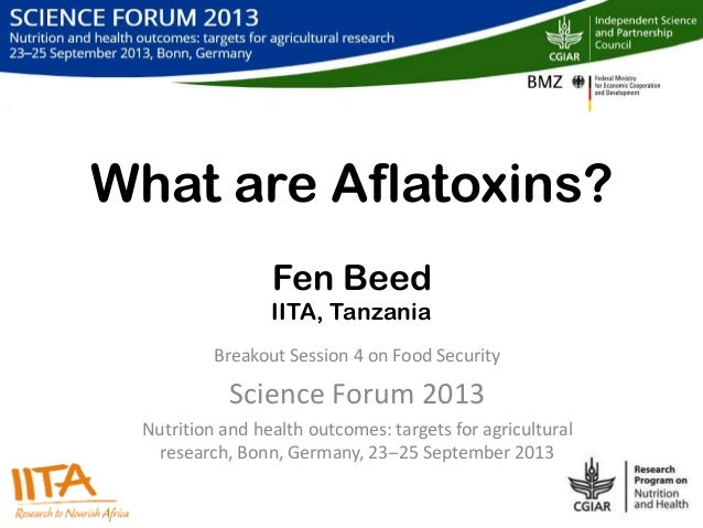 What are Aflatoxins? Fen Beed IITA, Tanzania Breakout Session 4 on Food Security Science Forum 2013 Nutrition and health o...
