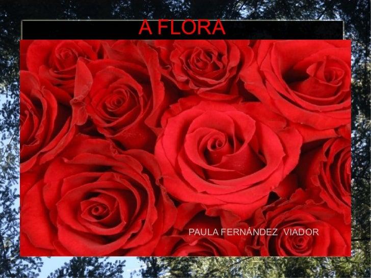 A FLORA PAULA FERNÁNDEZ  VIADOR