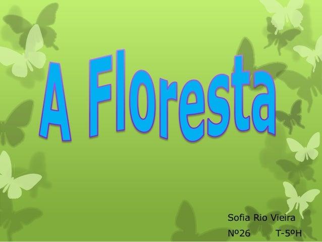 Sofia Rio VieiraNº26       T-5ºH