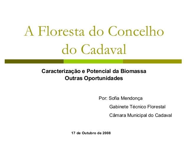 A Floresta do Concelho do Cadaval Caracterização e Potencial da Biomassa Outras Oportunidades Por: Sofia Mendonça Gabinete...