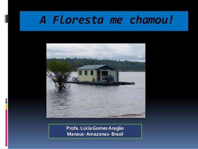 A Floresta me chamou!  Profa. Lúcia Gomes Aragão  Manaus-Amazonas- Brasil