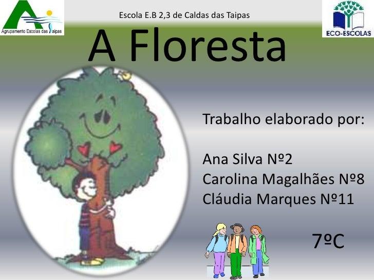 Escola E.B 2,3 de Caldas das TaipasA Floresta                       Trabalho elaborado por:                       Ana Silv...