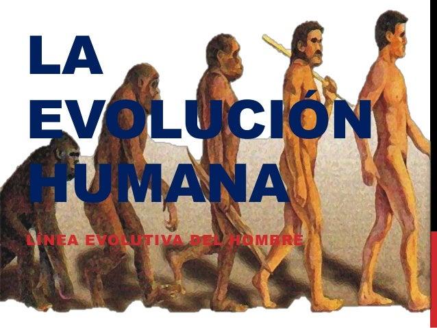 LAEVOLUCIÓNHUMANALÍNEA EVOLUTIVA DEL HOMBRE
