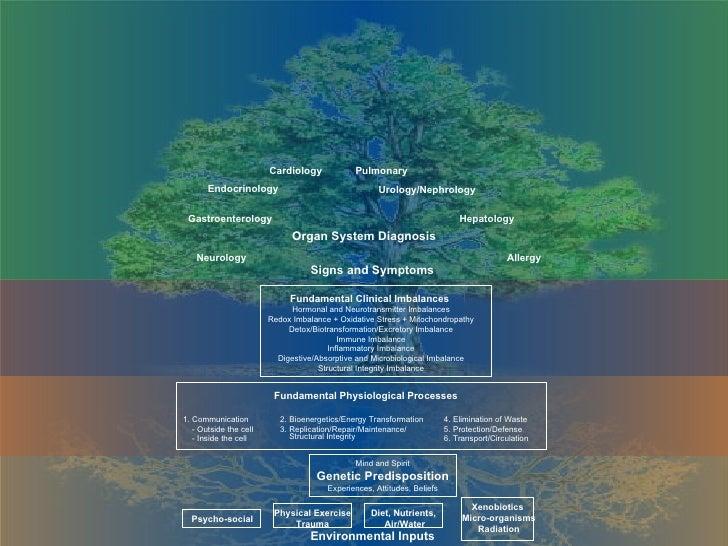 Cardiology Pulmonary Endocrinology Gastroenterology Neurology Organ System Diagnosis Urology/Nephrology Hepatology Allergy...