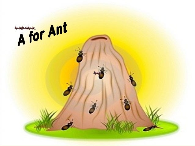 Imagine yourself the size of an ant