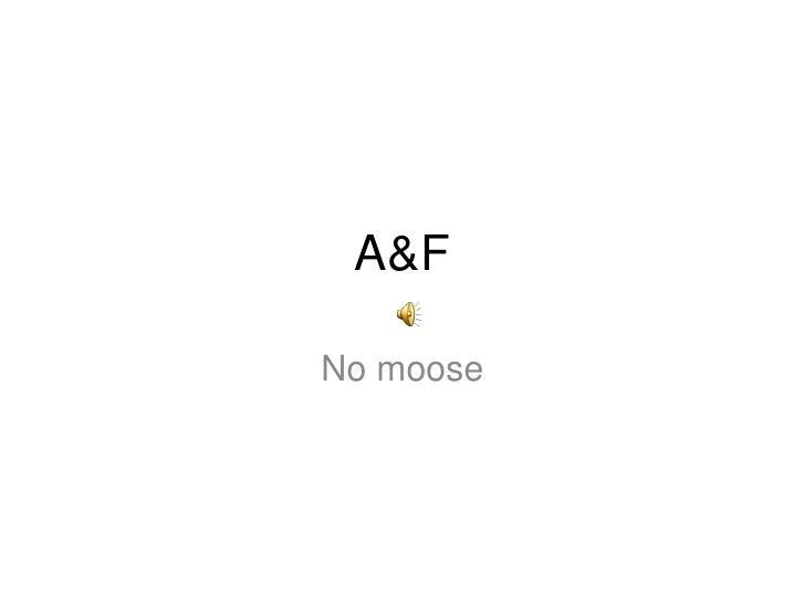 A&F<br />No moose<br />