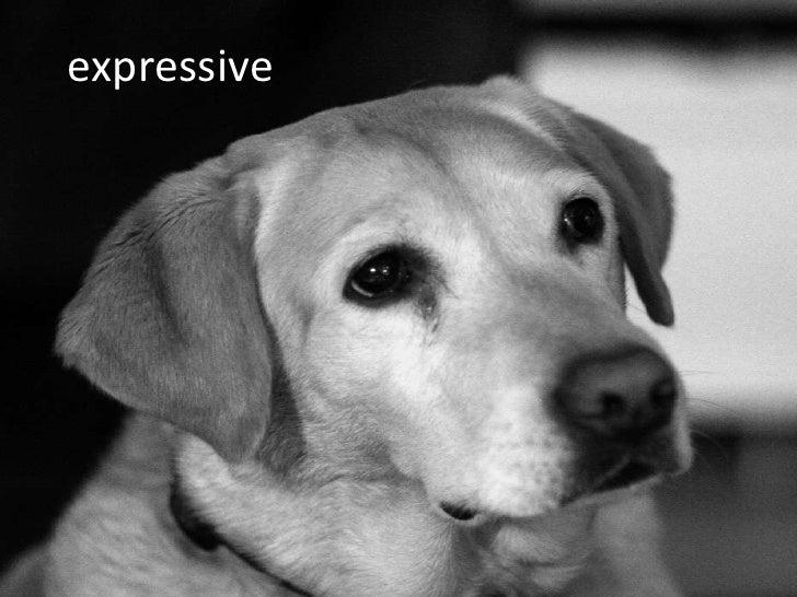 expressive<br />