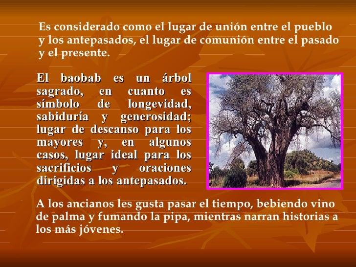 <ul><li>El baobab es un árbol sagrado, en cuanto es símbolo de longevidad, sabiduría y generosidad; lugar de descanso para...