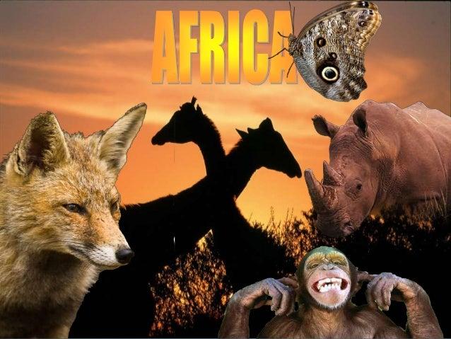África es el tercer continente más grande del mundo , Limita al norte con el Mar Mediterráneo, al oeste con el Océano Atlá...