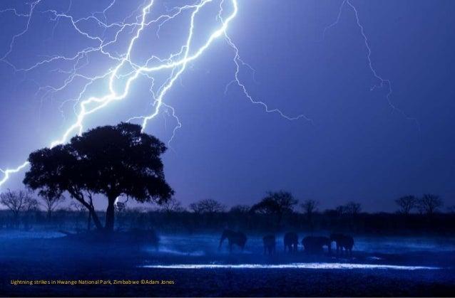 Lightning strikes in Hwange National Park, Zimbabwe ©Adam Jones